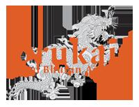 Drukair logo